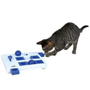 cat activity brain mover